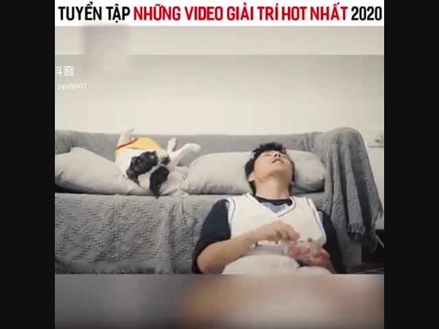 Tổng hợp video giải trí hot triệu view