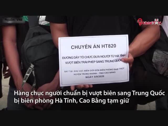 Nhóm đưa người trái phép ra nước ngoài bị khởi tố