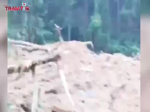 Phát hiện thi thể đầu tiên tại ngôi nhà bị sập của trạm bảo vệ rừng 67