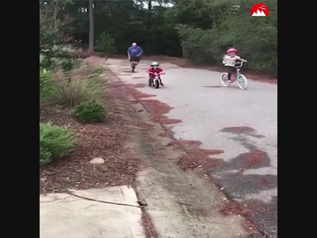 Khi người lớn chơi trò trẻ con