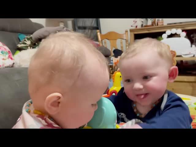 Cười bể bụng khi bé lần đầu gặp hươu cao cổ